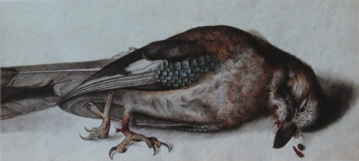 Ptáček, jenž umíral ve Tvých očích