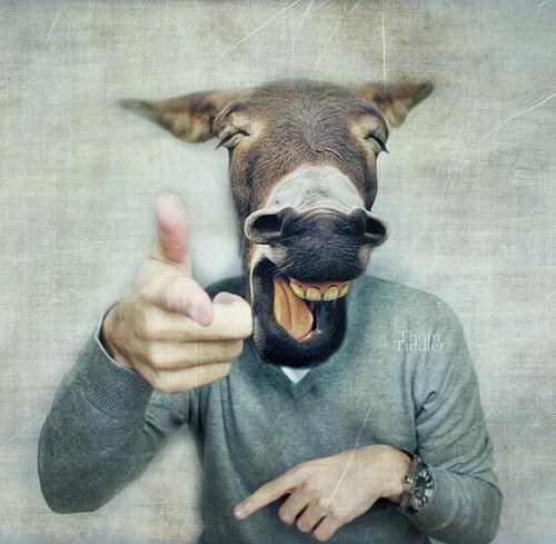 Devastating damnation of dorky donkey ass dude