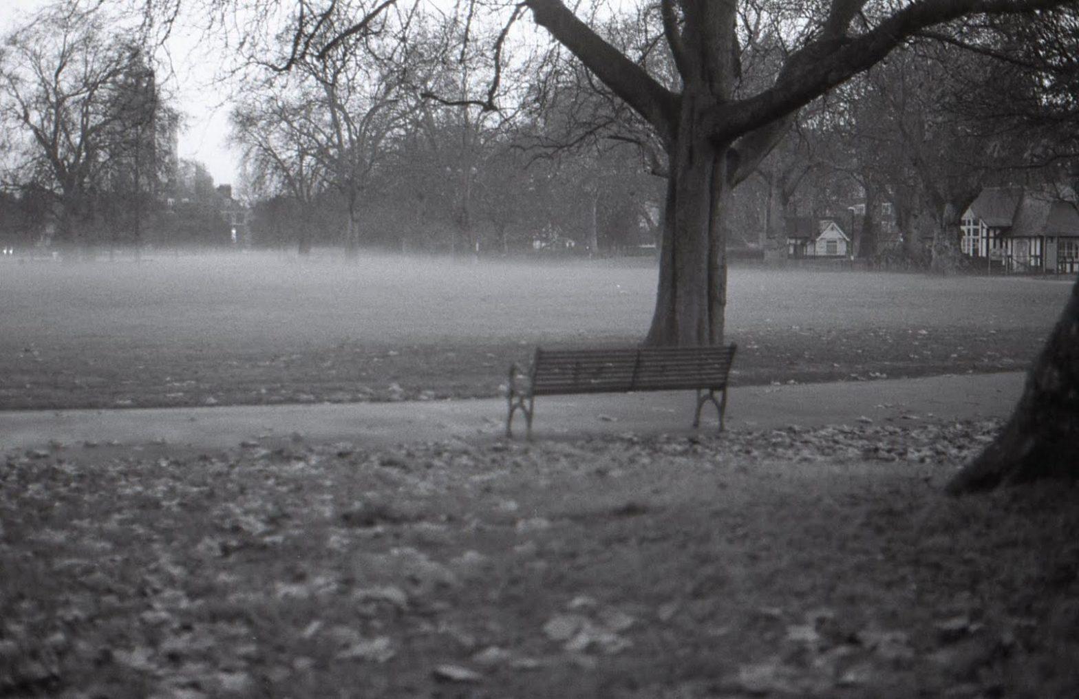 Báseň šedivého podzimu